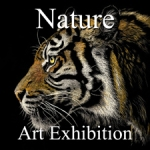 Nature - Art Exhibition