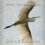 Debra Van Swearingen - Solo Art Series Winner