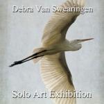 Debra Van Swearingen - Solo Art Series Winner
