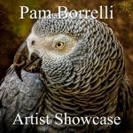 Pam Borrelli - Artist Showcase